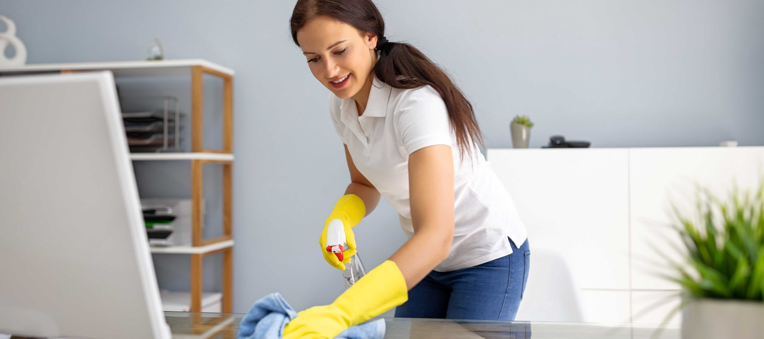 Dusting Tips For Professional Cleaning Services in Springfield Missouri